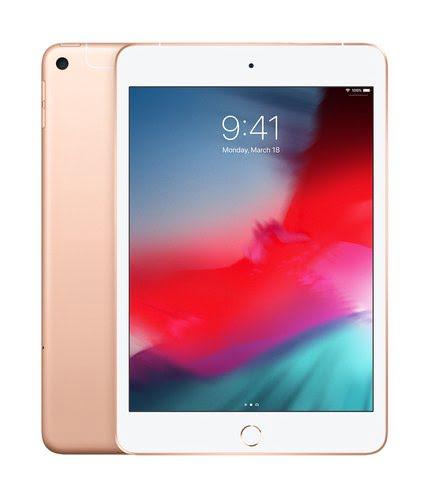 iPad Mini WF CL 256 Gold